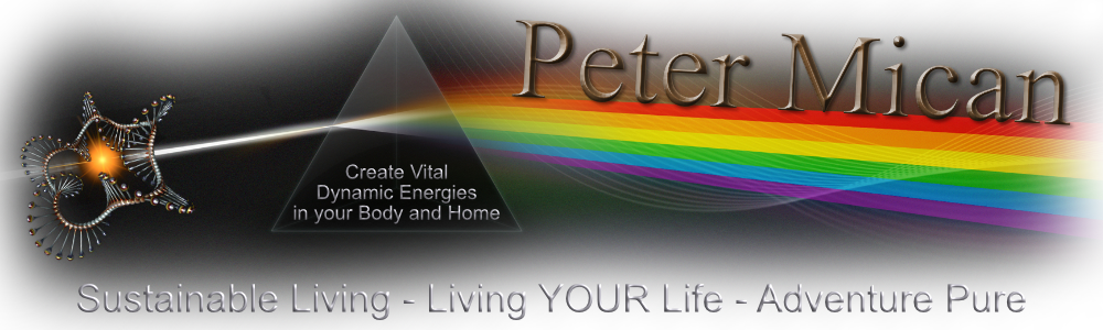 Peter Mican Logo